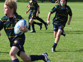 Junior Pathway Rugby