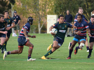 Melbourne v Box Hill Dewar Shield Rd 3 2015