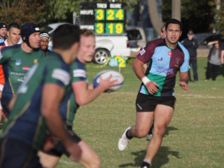 Dewar Shield Preview Harlequin v Melbourne