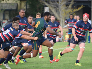 Preview Dewar Shield Rd 14 Box Hill v Melbourne