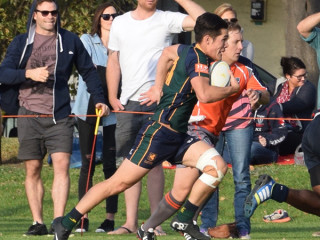 Review Rd 15 Dewar Shield Melbourne v Footscray