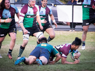 BLK Dewar Shield Major Semi Final 2017 Harlequins v Melbourne