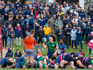 Rugby News - Melbourne Rugby Union Football ClubMelbourne